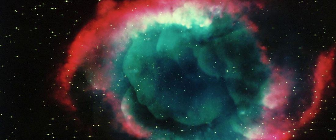 Arboria - Space